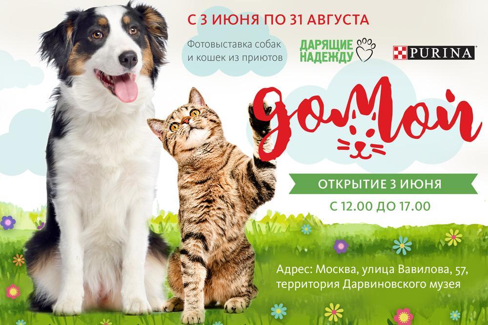 3 июня в московском Дарвиновском музее открывается фотовыставка «Домой»
